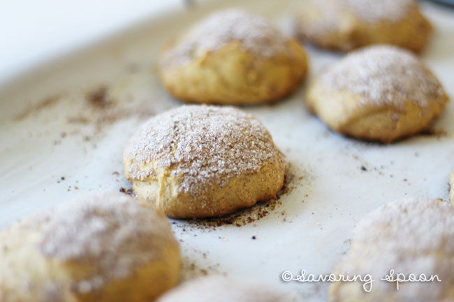 snickerdoodle blooper